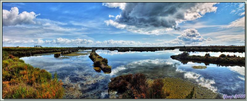 Marais sous les nuages (technique HDR) - Ars-en-Ré - Ile de Ré - 17