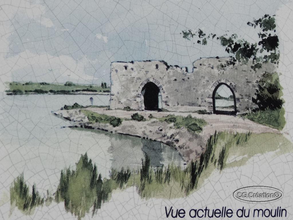 Promenade sur la Loire à Champtoceaux 49