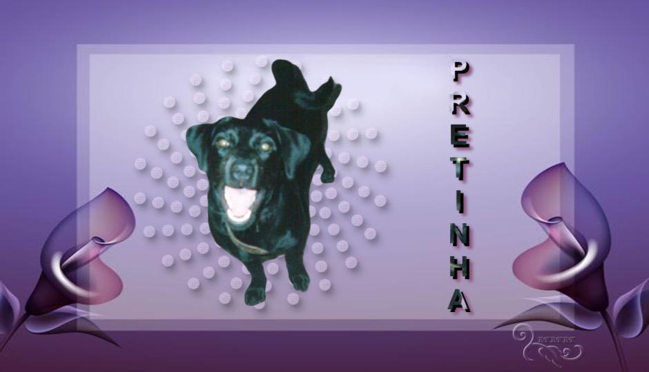 PRETINHA'S THEMES – 01