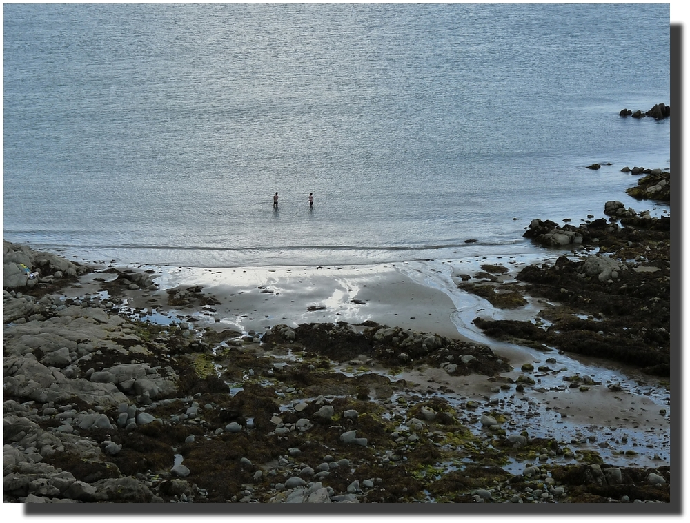 et pendant ce temps-là, les algues couchées, bien accrochées à leur galet, attendent que la mer revienne les mettre debout