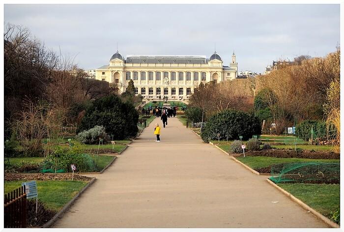 Jardin des Plantes à Paris.