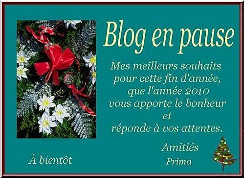 Blog en pause x xx