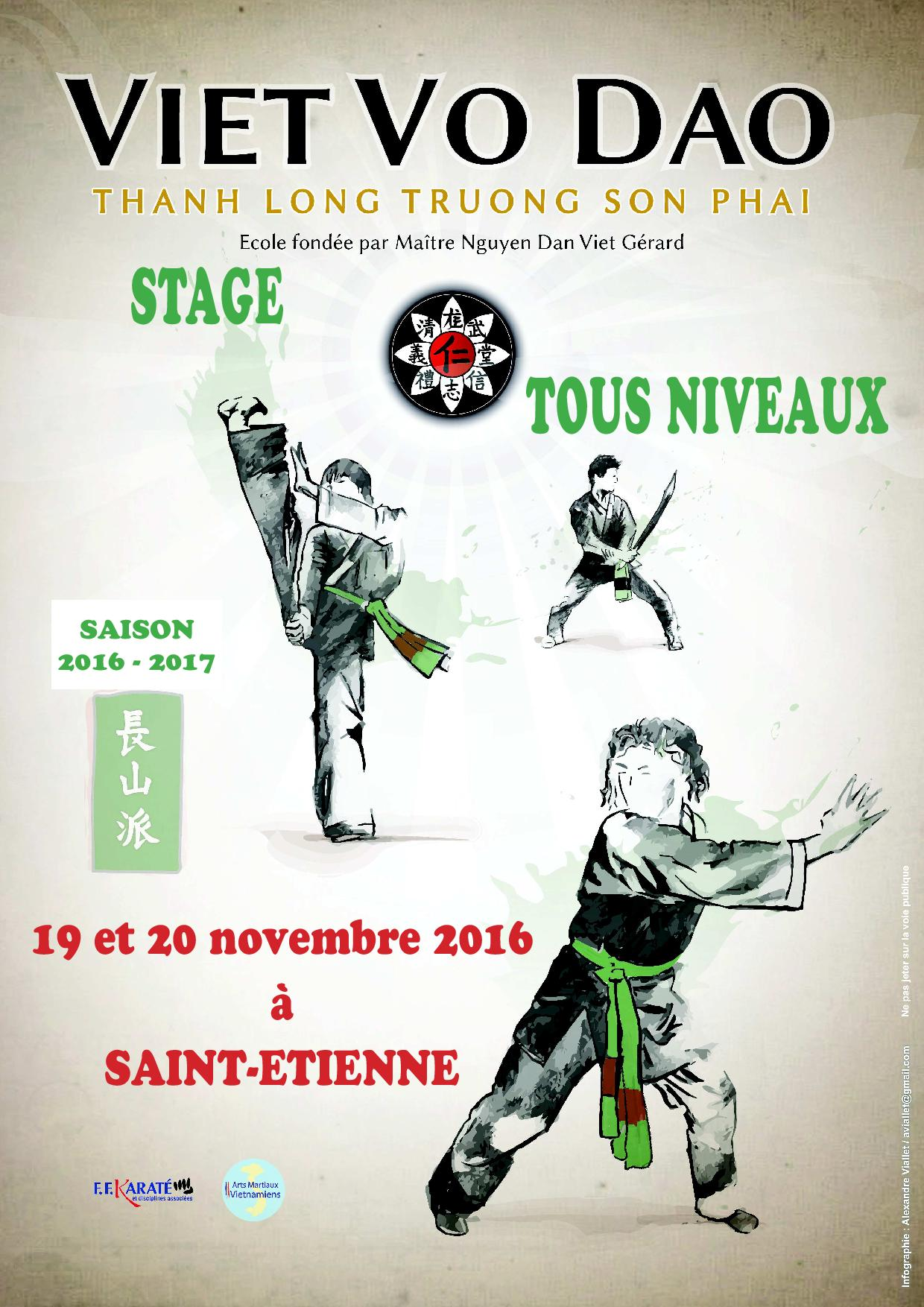 Stage 2015 saint etienne