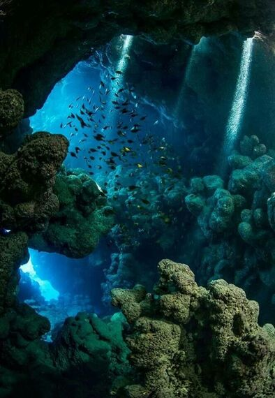 Underwater cavern; reminds my of my abstract underwater cavern. the colors and position of coral and rocks.: