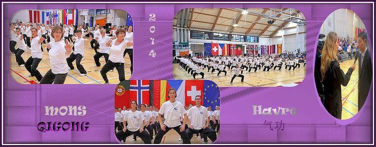QIGONG  , 气功,europa, health, forum, games, belgium,
