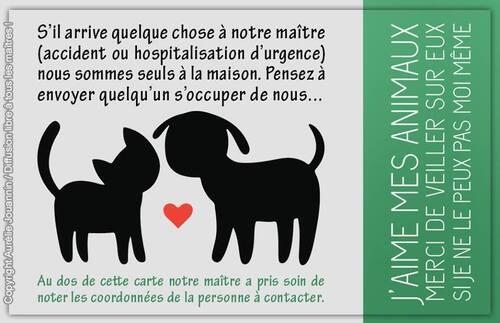 Copyright Aurelie JOUANNIN - Libre de diffusion