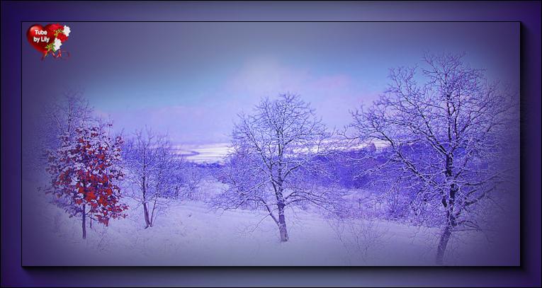 Mist paysage hiver 3