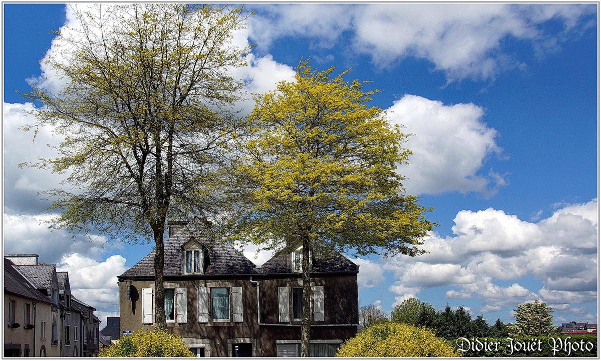(29) Finistère - Carhaix-Plouguer (2)