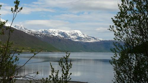 Dans les Fjords du grand Nord