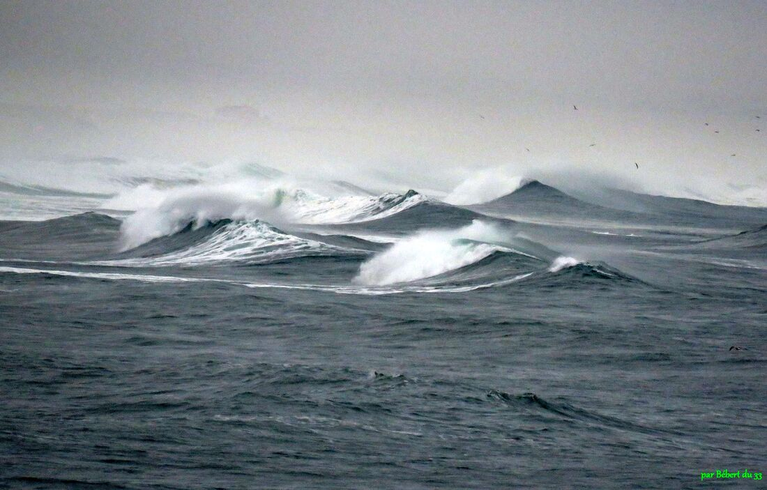 Surfeurs à Capbreton (40)
