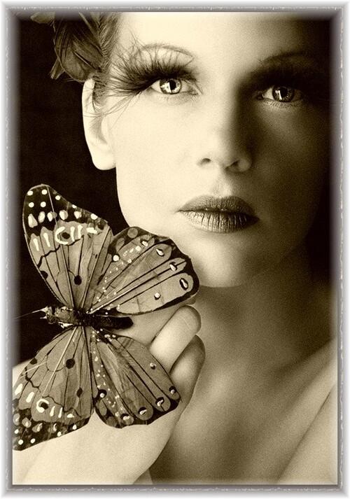 Papillon d'amitié