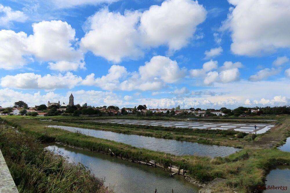 Sur l'ile de Noirmoutier -2