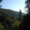 Massif forestier de la Rhue