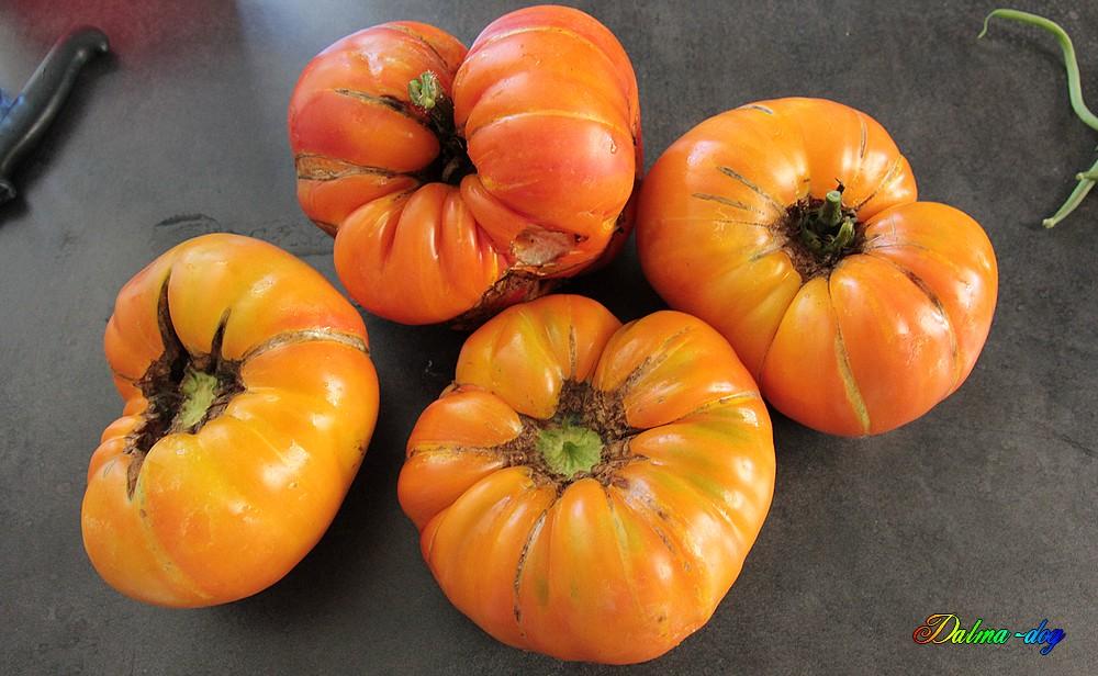 quatre tomates ananas 3kg080