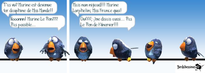 Les Z'oiseaux rigolos...
