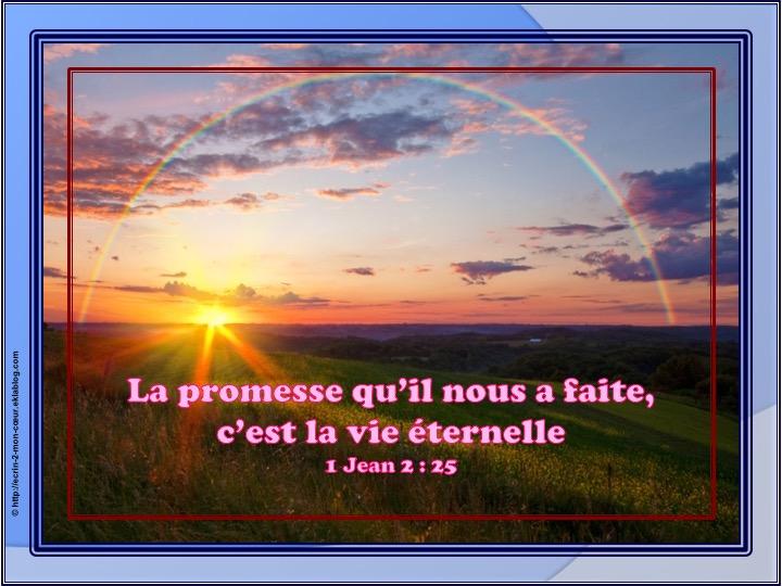 C'est la vie éternelle - 1 Jean 2 : 25