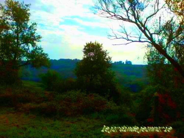 Monprimblanc (Mont Primblan en gascon) est une commune du sud-ouest de la France, située dans le département de la Gironde (région Aquitaine).  Ses habitants sont appelés les Monprimblannais