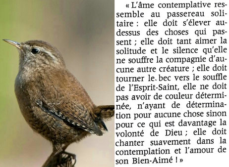 """Résultat de recherche d'images pour """"L'eucharistie et l'innocence"""""""