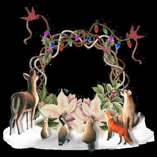 Animeaux Noël