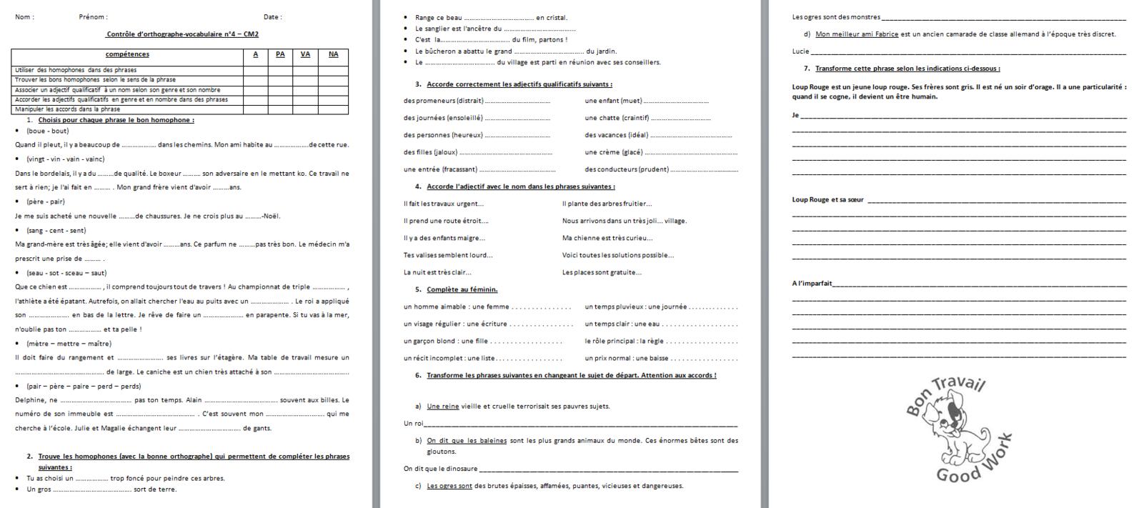 français : évaluation - contrôle de vocabulaire/orthographe -période 4 - CM2