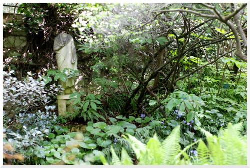 Jardin Alpin au Jardin des plantes.