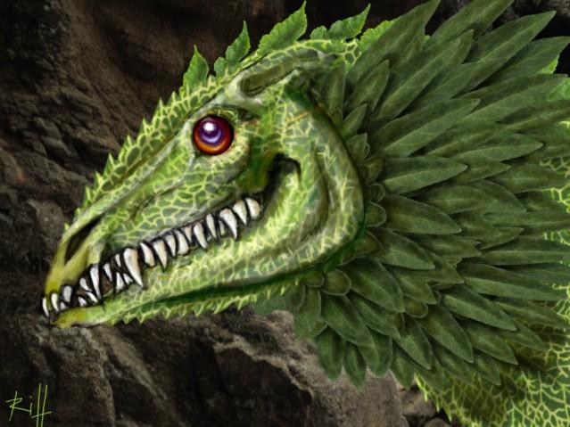 dragonplumefeuille