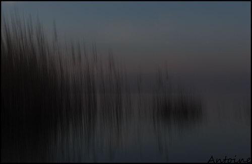 Un étang la nuit..
