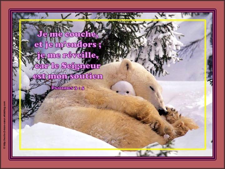 Le Seigneur est mon soutien - Psaumes 3 : 6