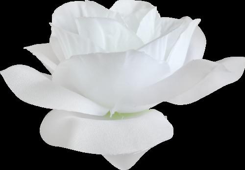 Une fleur / 3