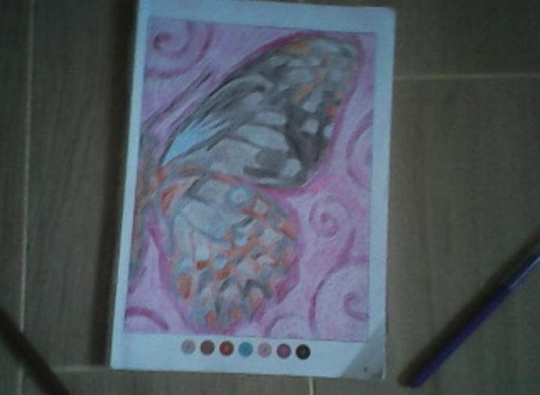 coloriage mystère 1 papillon