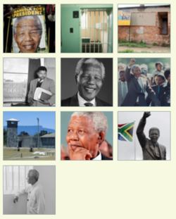 Learn about Nelson Mandela