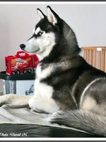 Naïka (11 mois)