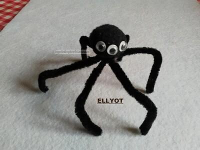 Araignée (de mon neveu)