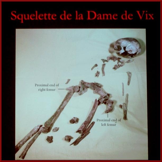 L'Assemblée Générale 2019 de la Société Archéologique et Historique du Châtillonnais (SAHC)
