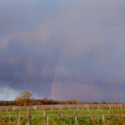 Averses de pluie et début d'arc en ciel - 16 Janvier 2016