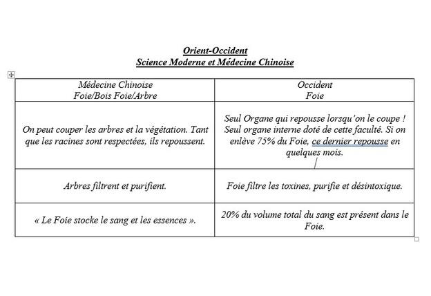 Le Printemps et le Foie - Partie 2 - Médecine Chinoise - Acide et Circulation d'Energie