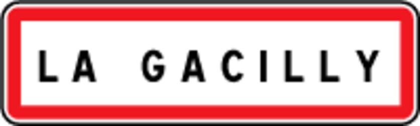 FÊTE DES FLEURS 2014  2/4   LA  GACILLY  MORBIHAN    22/06/2014