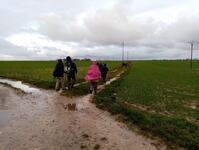 La randonnée du 7 février à Cambes-en-Plaine