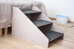 Facilité l'accès du canapé à votre compagnon