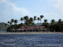 Martinique- Bonne Année !