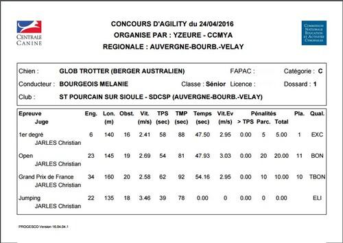 Concours agility Moulins 2016