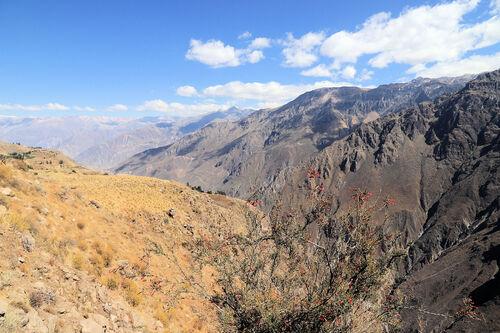 La canyon de Colca