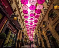 Les parapluie de Cleebourg 7.