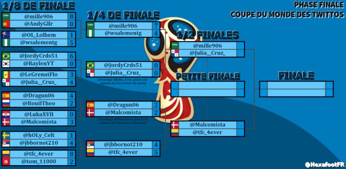 Qui sont les demi-finalistes de la Coupe du Monde des Twittos ?