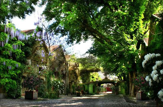 http://lancien.cowblog.fr/images/ArchitectureArt/Ruepriveeenfleurs4da96@250x140.jpg