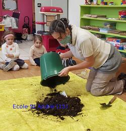Les petites bêtes du compost