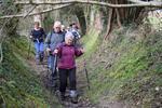 La randonnée du 21 février à Angerville