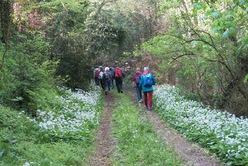 La randonnée du 23 avril à Bretteville-sur-Laize