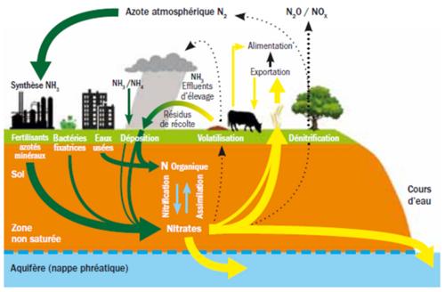 Pollution par les nitrates : protégeons mieux l'eau !