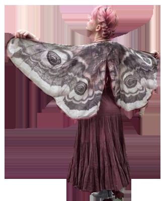 Tubes : Fée/papillon